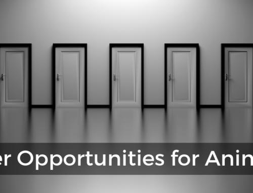5 Top Career Opportunities for Animators